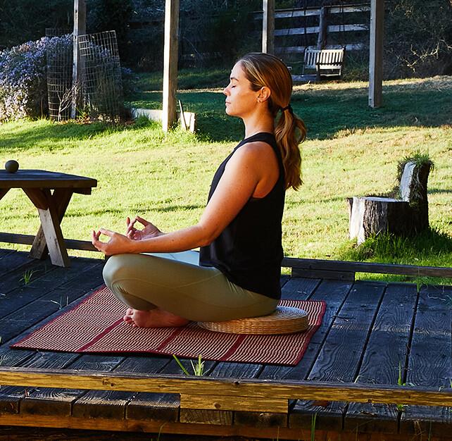 Mindful meditation beneath the arbor